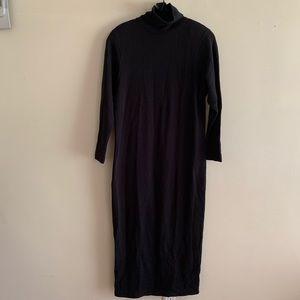 EUC Long Sleeved Winter Maxi Dress